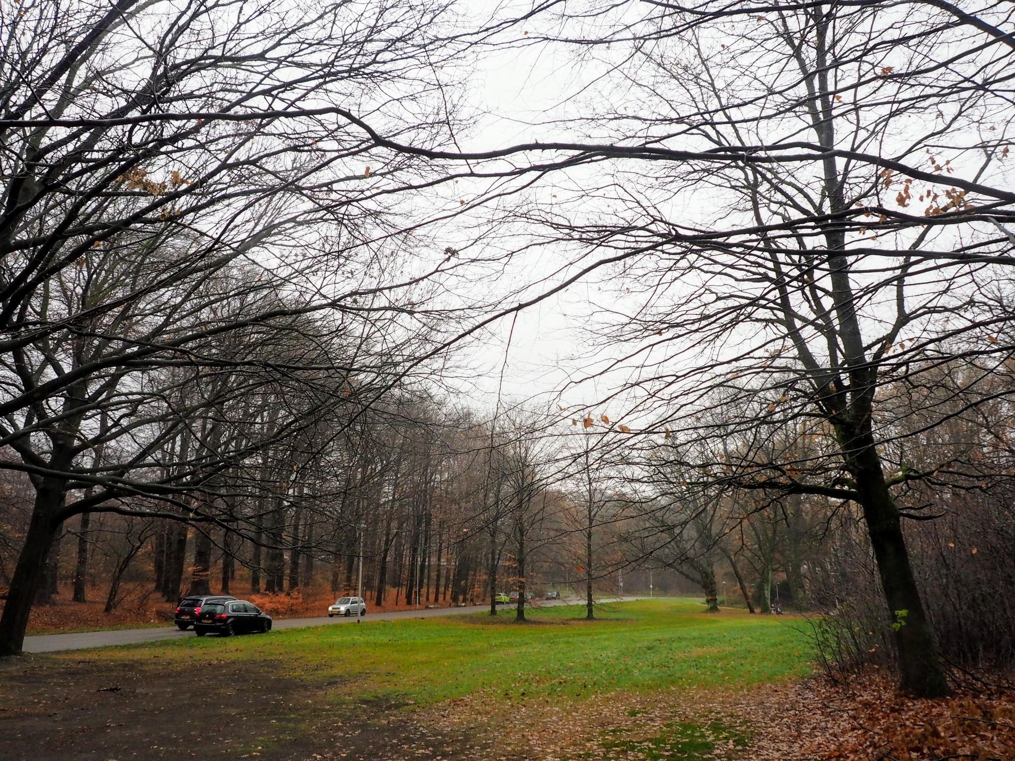 Park Sonsbeek Arnhem